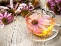 Echinacea: Wat zijn de beste producten van (09/21)?