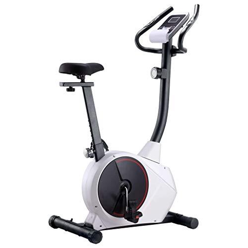 vidaXL Hometrainer Magnetisch met Hartslagmeter Fitness Fiets Airbike Cardio