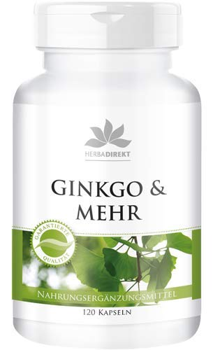 Ginkgo Complex - ginkgo biloba-extract plus bacopa monnieri-extract, foliumzuur, neuro-PS & taurine - veganistisch - 120 capsules